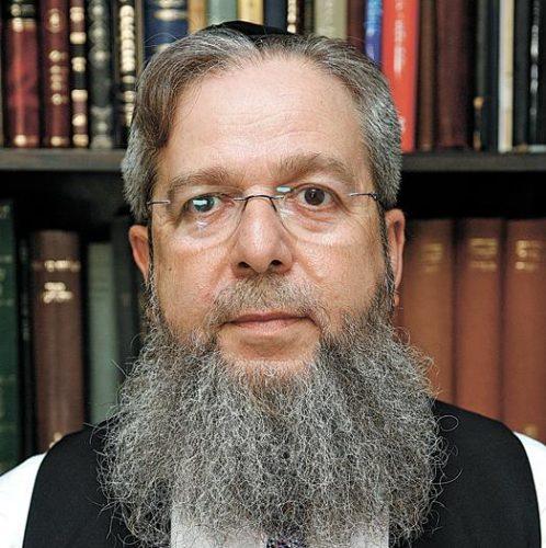 הרב אפרים זלמנוביץ' (צילום: ניר שמול)