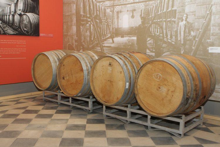 סודות עולם היין (צילום: עידן גרוס)