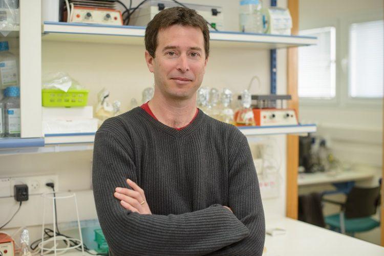 פרופסור רותם שורק (צילום: מכון ויצמן למדע)