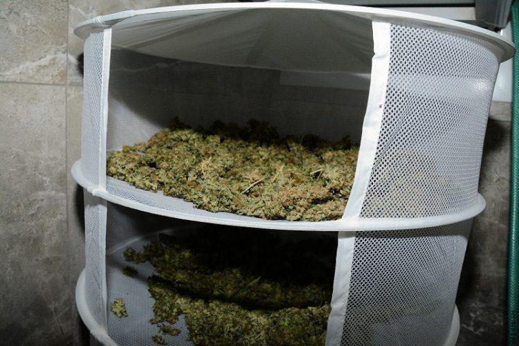 סמים שנתפסו במעבדה (צילום: דוברות המשטרה)