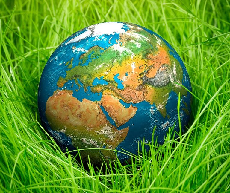 עולם ירוק (צילום אילוסטרציה: ASAP/INGIMAGE)