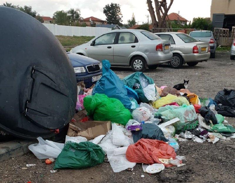 האשפה ברחוב סטולבוב 2 שבשכונת קרית משה