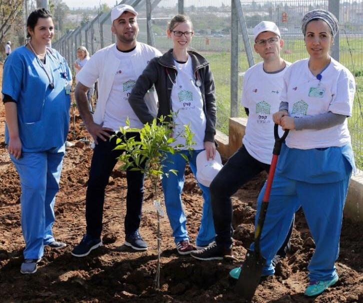 רופאים מתמחים וסטאז'רים נוטעים עץ בקפלן (צילום: אופיר לוי, בית החולים קפלן)