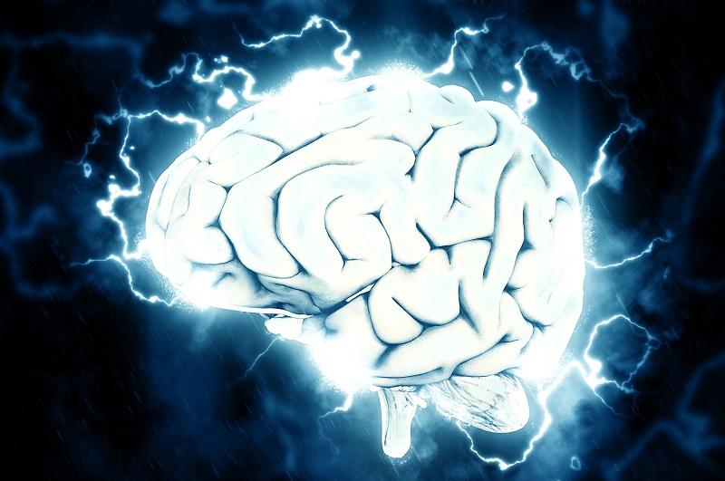 מוח (צילום אילוסטרציה)
