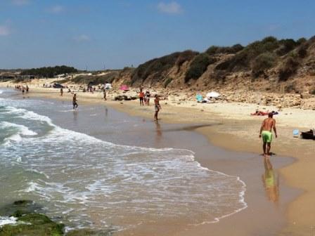 חוף פלמחים (צילום: דב גרינבלט, החברה להגנת הטבע)