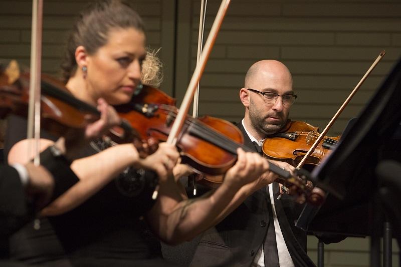 כינורות (צילום: כפיר בולוטין)