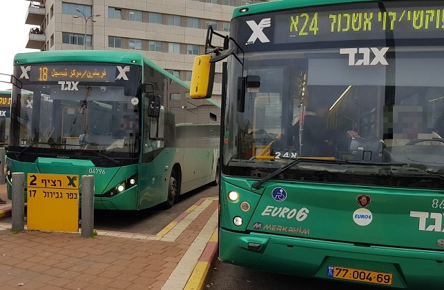 אוטובוסים של אגד (צילום אילוסטרציה)